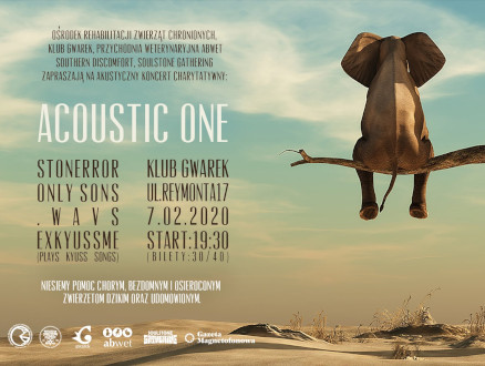 Acoustic One - koncert charytatywny - zdjęcie główne wydarzenia